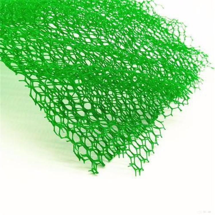 三维植被网护坡